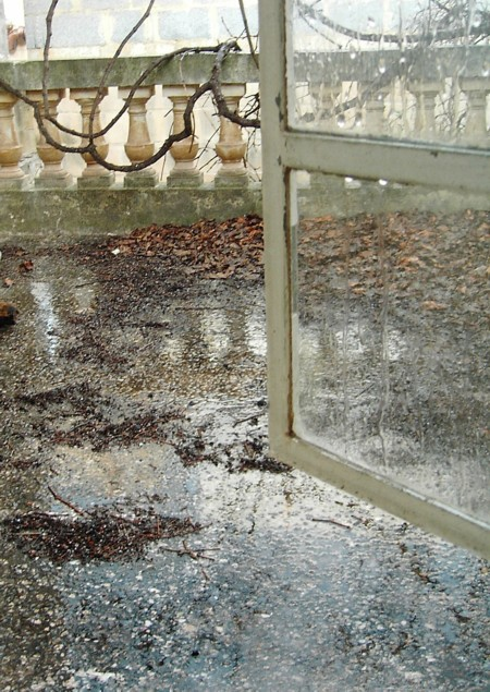 Dead leaves and melted hailstones on a patio.
